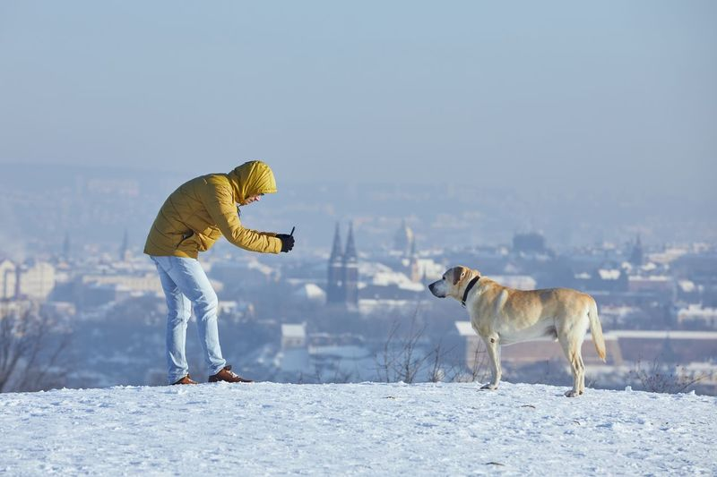 Dog standing on snow covered landscape during winter