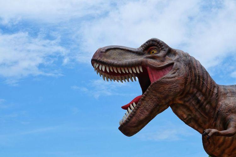 T Rex Dinosaur Cement Art T Rex Dinosaur