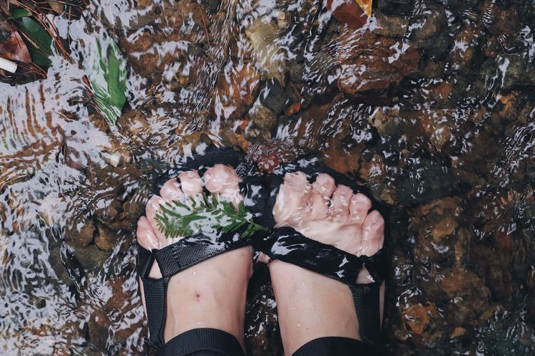 Water Flow  Run Water Flow Foot Low Section Human Leg One Person High Angle View Nature Human Body Part Day EyeEmNewHere The Week On EyeEm Cool Leaf Outdoors Real People Adults Only Adult People One Woman Only Only Women Close-up Freshness Summer Exploratorium