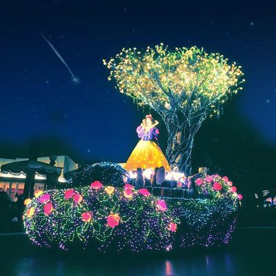 Disneyland Disney Tokyo,Japan Night Flower Arts Culture And Entertainment Tree Plant Nature No People Astrology Beauty In Nature Star - Space Moon Astrology Sign Milky Way Outdoors Flower Head Astronomy