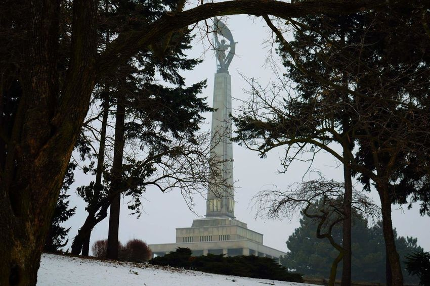Statue Tree Sky No People Outdoors Nature Tree Nature Photography Memorial Soldier Respect Monument Beuty Snow ❄ Day