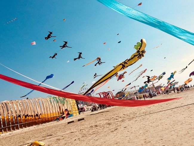Kite festival. Berck Plage Land Ribbon Witches Witch Lizard Kite Festival Kite Childhood Sky Sand Nature Beach Flying Day Sky Sand Nature Beach Flying Day Water Leisure Activity Outdoors Sunlight Multi Colored Blue