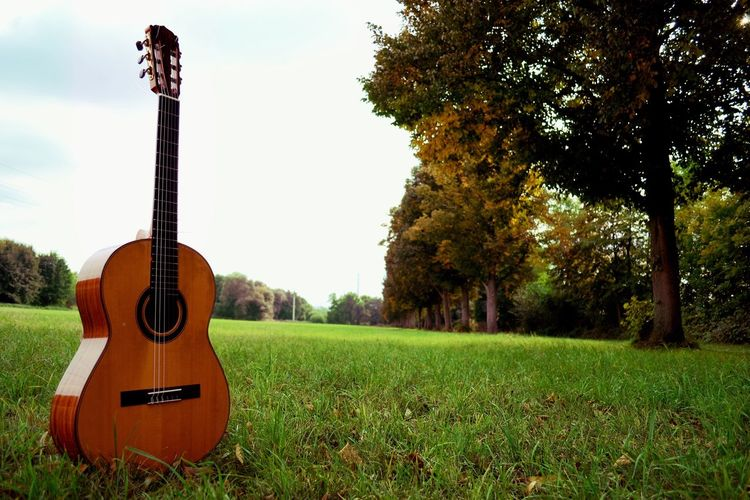 Started taking pictures recently and I'm seeking for strange but natural pictures Tree Music Musical Instrument Guitar Musical Equipment Arts Culture And Entertainment Landscape Field Acoustic Guitar Tranquility Tranquil Scene Grassland Day Outdoors Green Color Grassy Lawn Orange Color Babysteps Starting Photography