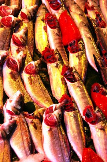 Flashback 2011 Pentax K20d Fish Fish Market Palamut Istanbul Istanbul Turkey Kadıköy Istanbul #turkiye