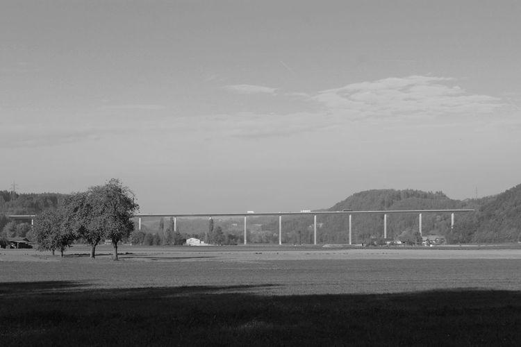 Switzerland Architecture Landscape Landschaft Viaduct Viadukt Autobahnbrücke Blackandwhite Schwarzweiß Schweiz Brücke 1501 Tree Bridge - Man Made Structure Sky