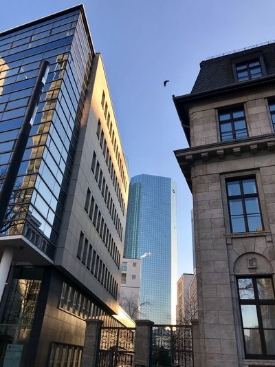 Architecture City Germany Architecture Building Exterior Built Structure Low Angle View Skyscraper Modern City Day Bird Sky Animal Themes No People Outdoors Travel Destinations