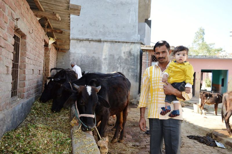 Portrait of father carrying son while standing by cattle at farm