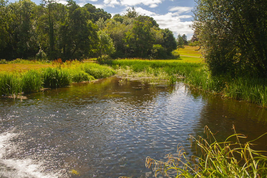 Doneraile Grass Nature View Wood Beauty In Nature Day Doneraile Park Green Color Landscape Nature No People Outdoors Park Plant River Sky Sun Tree Water