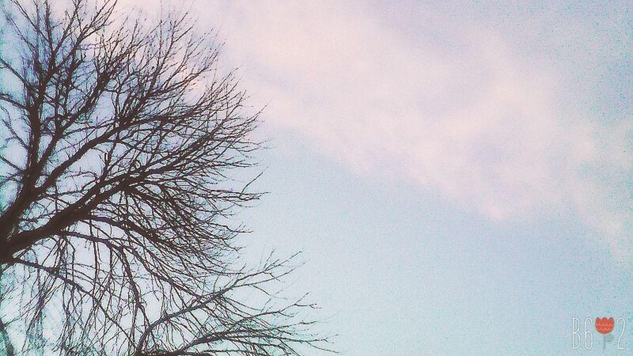 Небо прекрасное. Люблю смотреть на небо. First Eyeem Photo