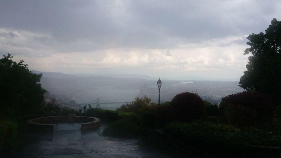 Tree Water Fog Mountain Sky Smog