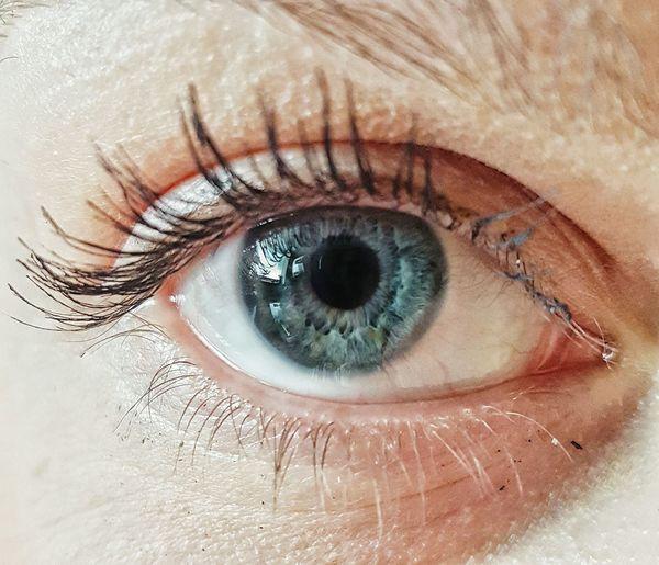 Human Eye Eyelash Close-up Eyesight Sensory Perception Looking At Camera Extreme Close-up Part Of Staring Reflection Full Frame Person Human Skin Person Iris - Eye Eyeball My Love The Portraitist - 2018 EyeEm Awards