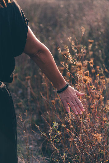 Cropped hand of woman against plants