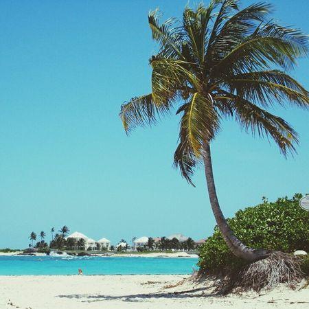 Bahamas Beachphotography Sea And Sky Nassau, Bahamas Beach EyeEm Gallery Eyeemphotography Blue Sky Life Is A Beach