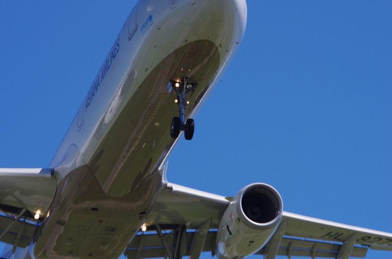 仙台空港に着陸するアシアナA320/Landing! at Sendai airport in Japan. 飛行機 Planes Hello World アシアナ航空 Asiana Airlines