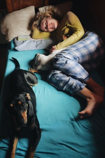 High Angle View Of Woman With Dogs In Bed