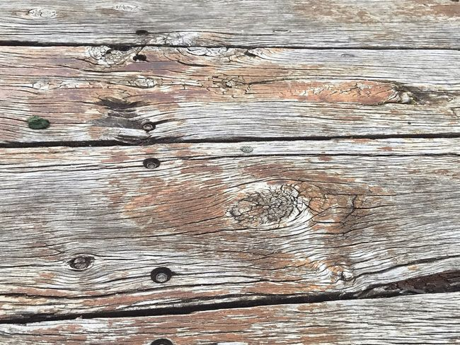 Wooden Texture Backgrounds Wood - Material Textured  Pattern Wood Grain Hardwood Timber Brown Rustic Full Frame No People Close-up Nature Tree Outdoors Day
