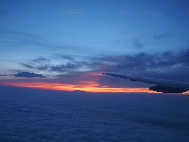 城達也さんのジェットストリーム聴きたくなる😂 Cloud - Sky Sky Sunset Scenics - Nature Beauty In Nature No People Air Vehicle Dramatic Sky Cloudscape Blue Airplane Aerial View