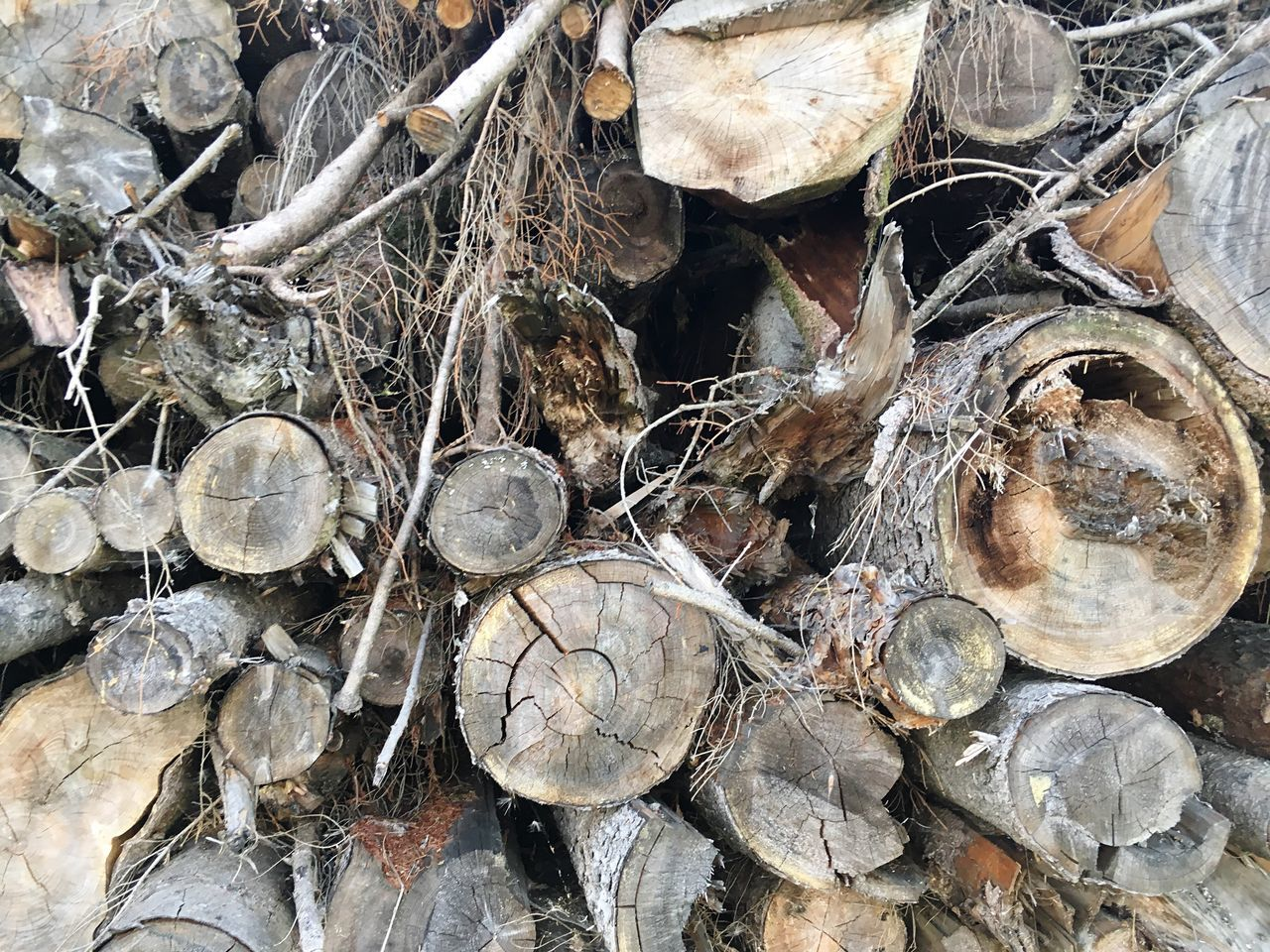 stack, timber, log, heap, woodpile, forestry industry, large group of objects, full frame, abundance, no people, day, close-up, outdoors