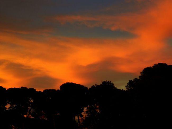 Nubes de atardecer en Muchavista, El Campello, Alicante, Spain. EyeEm Nature Lover EyeEm Best Shots Eye4photography  Nature Landscape Taking Photos Relaxing Hello World Clouds And Sky Photography