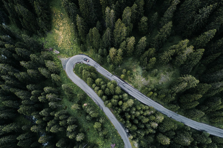 Curvie Aerial View From Above  Plant Tree Green Color No People Road Growth High Angle View Transportation Nature Beauty In Nature Day Curve Foliage Non-urban Scene Forest Scenics - Nature Motor Vehicle Mode Of Transportation Car Outdoors From Above  Top Down View EyeEmNewHere EyeEm Nature Lover Capture Tomorrow 2018 In One Photograph 17.62°