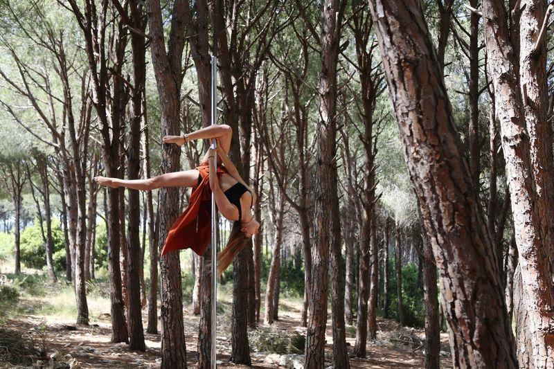 Pine woods pole dancing