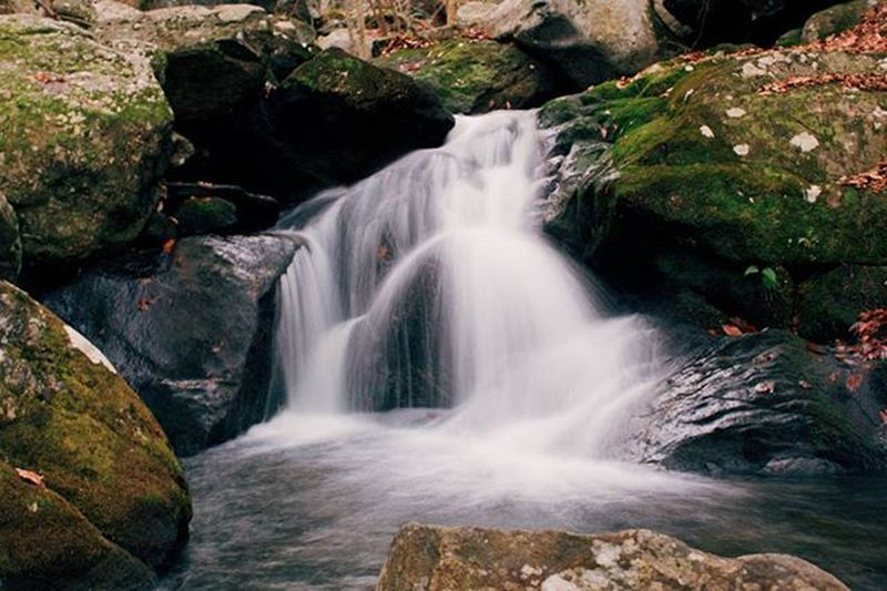 Don't go chasing waterfalls, because you will fall into holes 😭😭😭😭😭 Ireallyfellintoahole Thanstayedthereandtookalittlenap Whiletuwaslaughingandconfused Waterfall Longexposure Fall Woods Photography Justshoot Shoot2kill Massachusetts Artofvisuals Way2ill