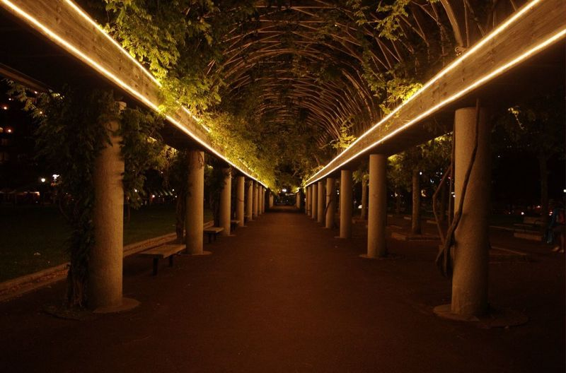 Night Park Illuminated Architecture Night Built Structure Lighting Equipment Architectural Column The Way Forward Empty