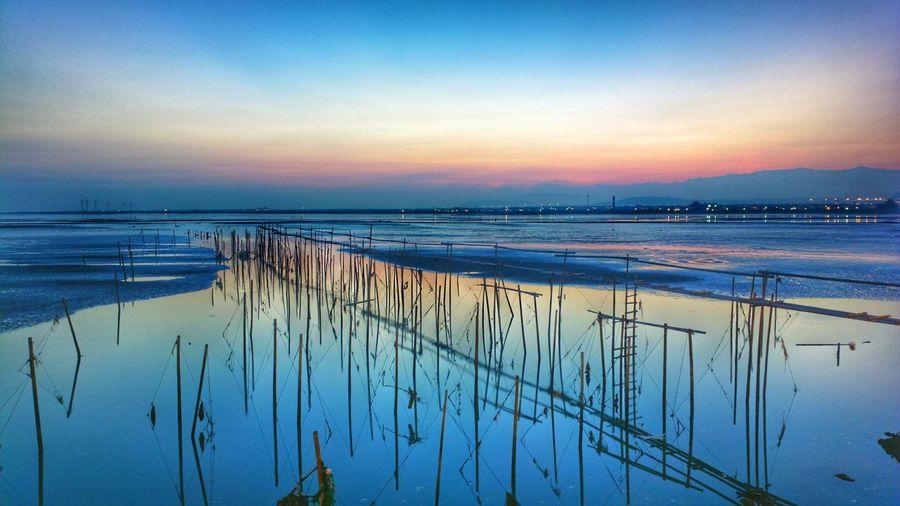 高美濕地 Nokia