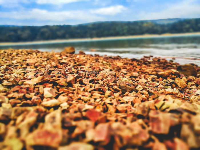 Surface level of pebbles on beach against sky