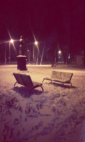 Снежный парк прогулказимой