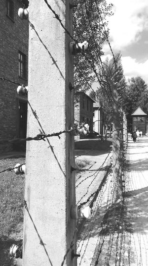 Electric Wire Konzentrationslager Auschwitz Ww2 Auschwitz  Silence Is A War Crime