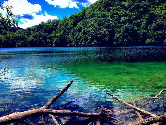 Water Lake Lake View Tree Trees Forest Nature Beauty In Nature Green Color Sky Cloud - Sky Cloud Clouds Croatia Plitvice Lakes National Park National Park Park Landscape Skyporn Clouds And Sky Summer Mountain Outdoors Travel Trip
