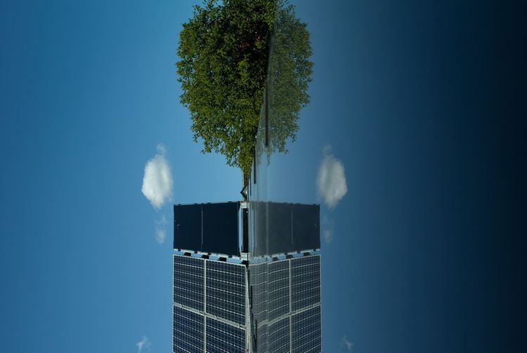 Blue Sky Cloud Green Roof Photovoltaic Rooftop Solar Energy Solar Panels Sustainable Living Sustainablesolutions Tree
