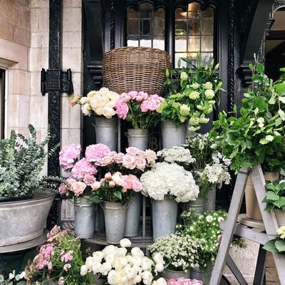 Mothers Day Shop Small Pastel Flowers Flower Arrangement Flower Shop Plant Flowering Plant Flower Growth Freshness No People Nature