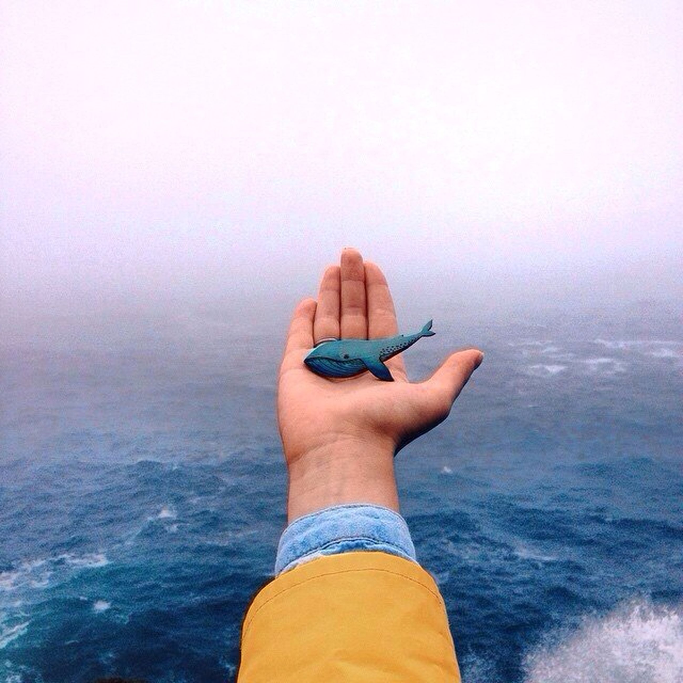 holding, person, sea, water, part of, lifestyles, cropped, leisure activity, human finger, personal perspective, men, sky, horizon over water, unrecognizable person, copy space, nature, one man only