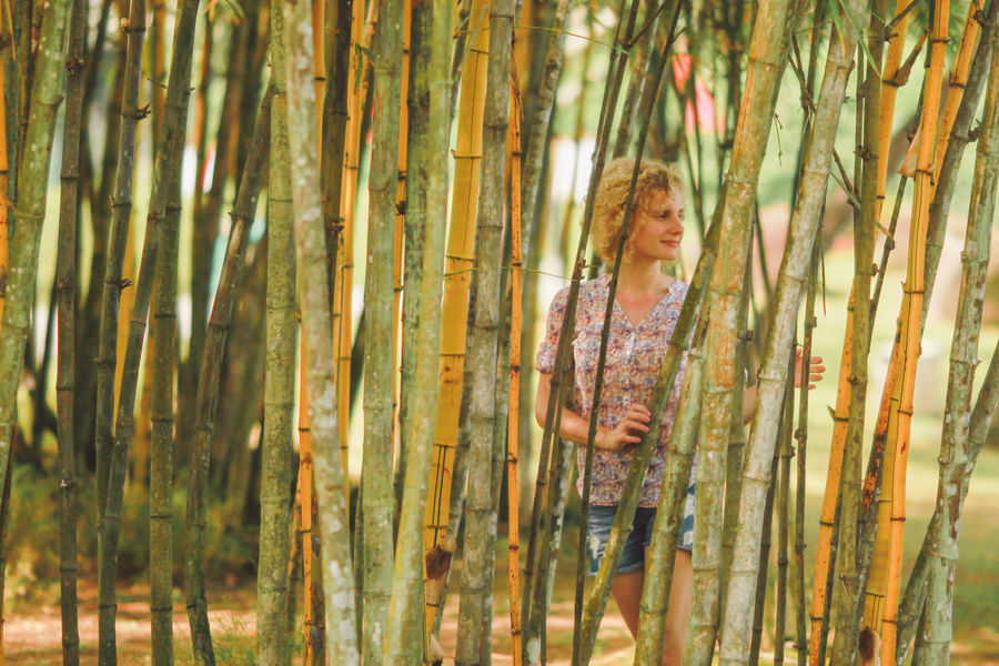Abundance Backgrounds Bamboo Bamboo - Plant Bamboo Forest Casual Clothing Chinese Garden Close-up Curly Hair Natural Light Portrait Forest Full Frame Growth Lifestyles Nature Outdoors Photoshoot Portrait Tranquility Tree Tree Trunk Trees Wood - Material WoodLand Original Experiences Connected By Travel