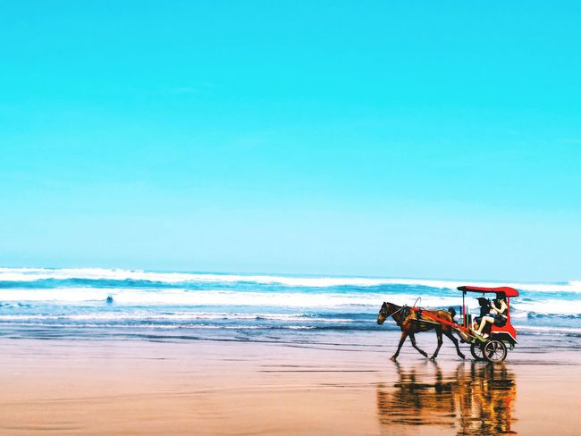 EyeEm Selects Beach People Outdoors Nature Day Sky EyeEm Best Shots Vacations EYECAMAWARDS Beautiful Sea Sport Water Sunset EyeEm EyeEmNewHere EyeEmBestPics EyeEmSelect Breathing Space Investing In Quality Of Life