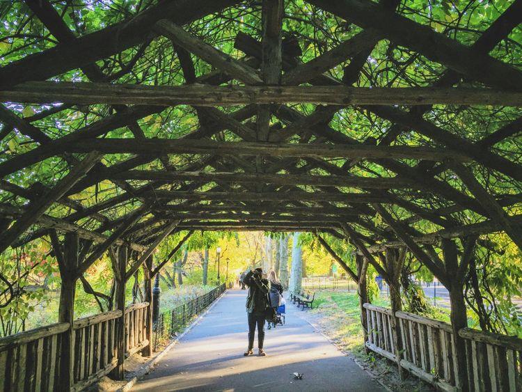 Eyeem Philippines Ofw Central Park New York City Manhattan Autumn Autumn Collection EyeEm Gallery The Week On EyeEm