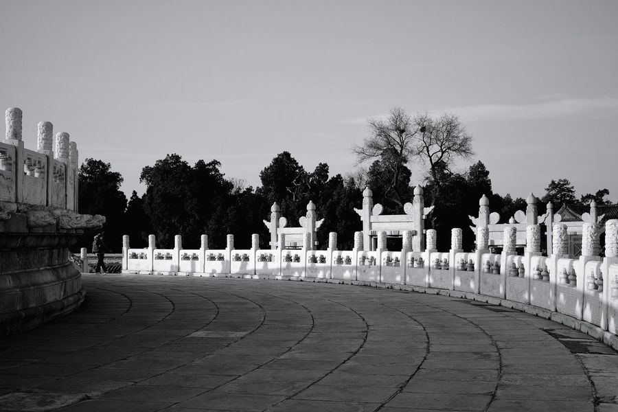 Memorial Cemetery In A Row Military Tombstone War Army Soldier Grave History Outdoors Tree Army King - Royal Person Sky Day Politics And Government People Old Buildings Sunlight Shadow Black And White Temple Of Heaven Park Beijing, China FUJIFILM X-T10 Light And Shadow