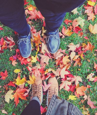 Autumn Personal Perspective Leaves Color Leaf Facetoface Toes Love Cozy EyeEmNewHere Basically Falling EyeEmNewHere