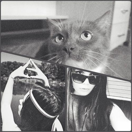 That's Me Belarus. Minsk Girl Echelonfamily Mycat♥ 😺😸😽🔥✌️