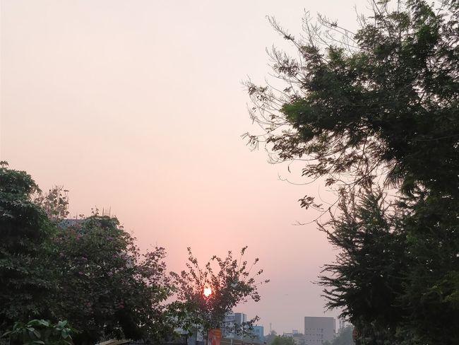 Sunset Evening Sky Evening Light Evening Sun Sunset_collection