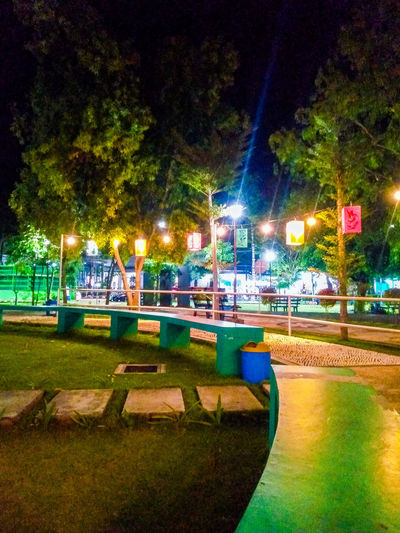 Illuminated park by street at night