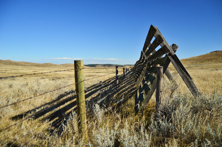 Shadows South Of Manville Wyoming Snow Fence Wood Material Outdoors Sunshine Shadow Clouds Weathered Wood Blue Color Clear Sky Rural Scene Barbed Wire Fence Wooden Post
