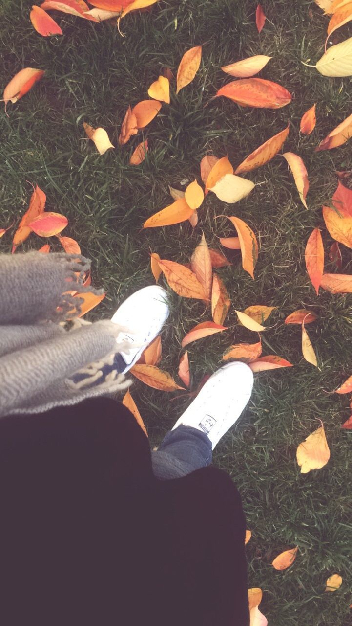 one person, human leg, real people, human body part, low section, high angle view, shoe, personal perspective, human foot, standing, leaf, autumn, outdoors, day, human hand, men, lifestyles, nature, grass, close-up, people