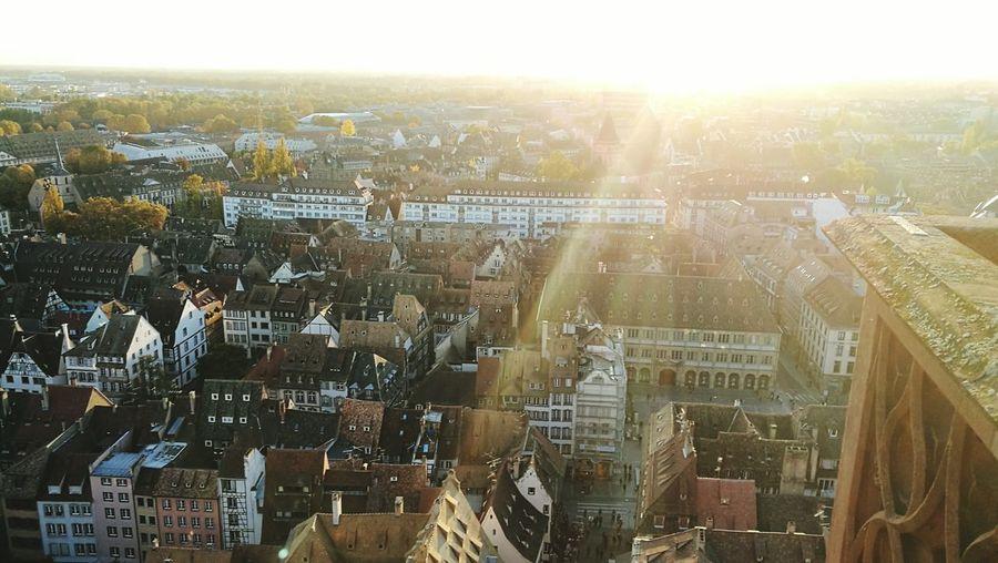 Cathédrale De Strasbourg Hauteurs Vuedehaut Sunlight First Eyeem Photo