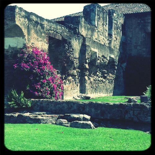 Ruinas Antigua Enjoying The View