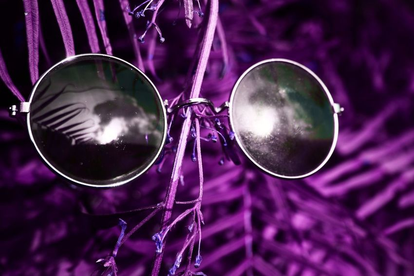 Plant Branch Close Up Close-up Day Focus On Foreground Metal No People Outdoors Purple Reflection Sunglasses