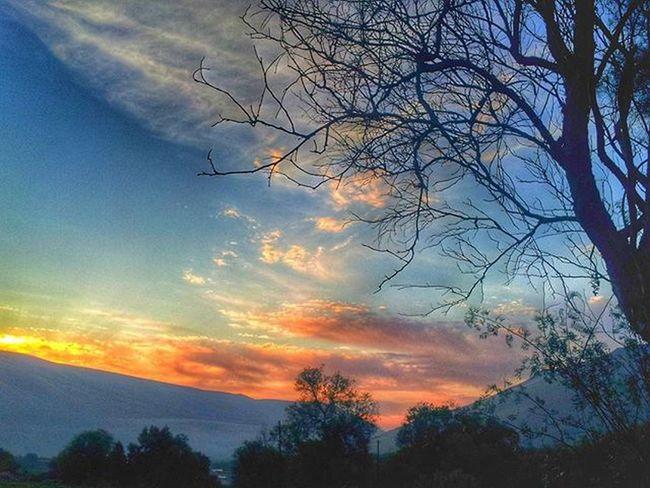 🍃🌄 ValledeLluta Sky Nature Colors