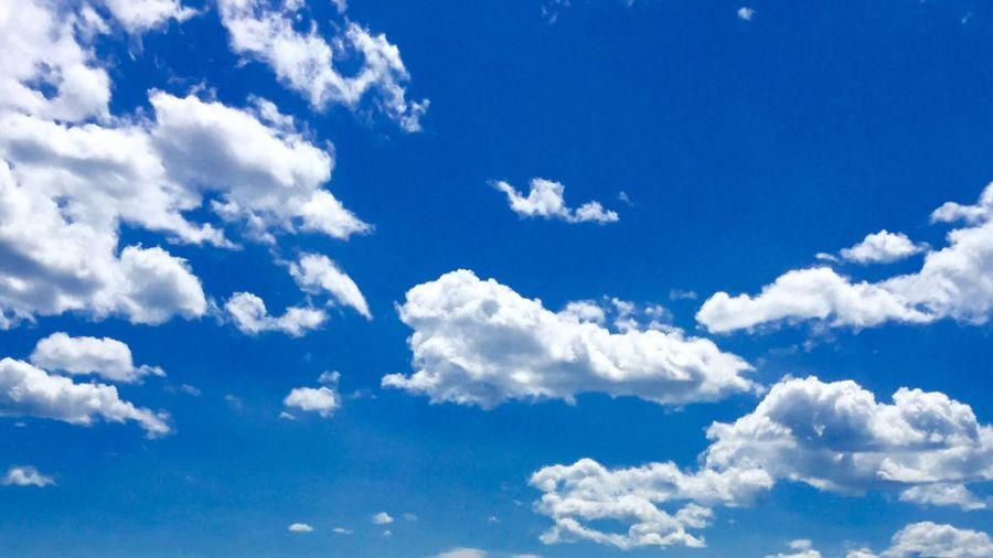 Blue Sky Fluff Fresh On Eyeem